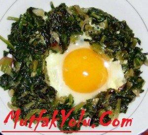 yumurtalı ıspanak